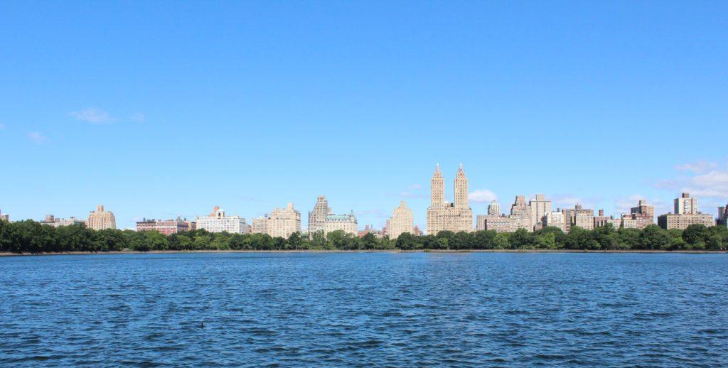 Vista Central Park