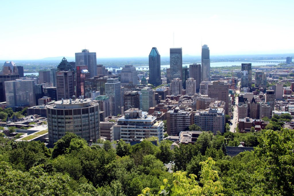 mont royal vistas