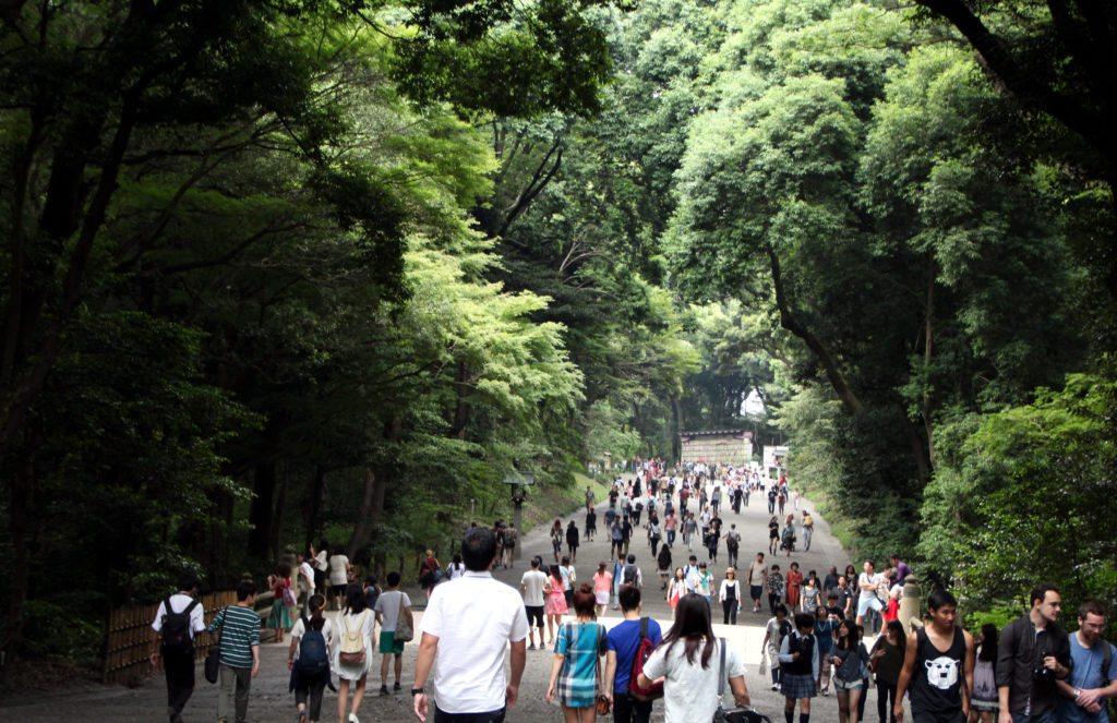 santuario Meiji, Harajuku, Tokio