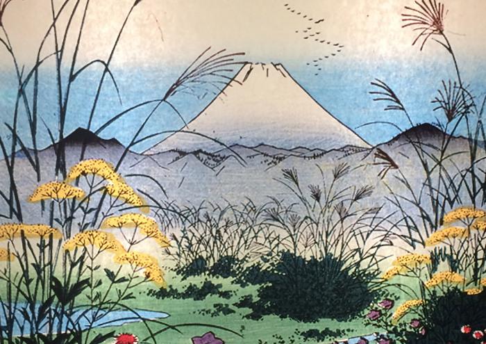 diseño Monte Fuji 2