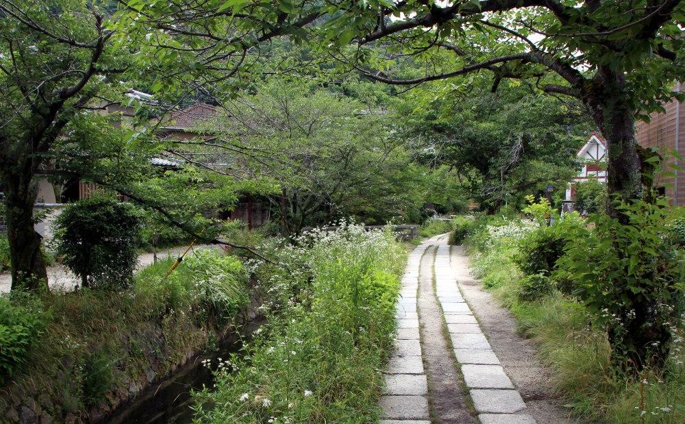 camino del filosofo, kioto
