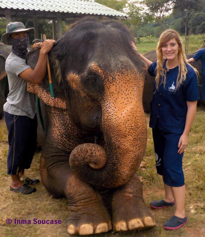 Baan Chang Elephant park - experiencia unica