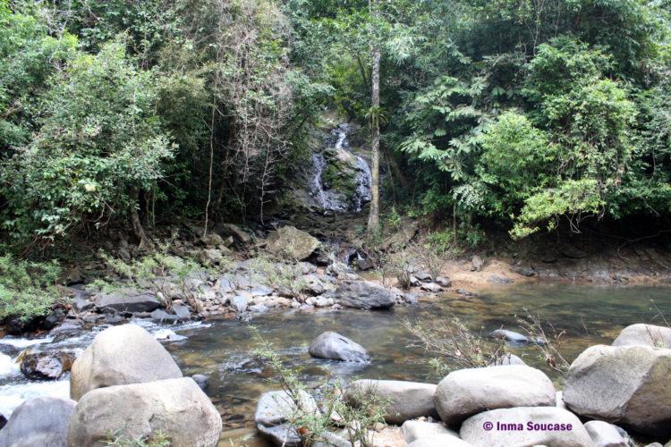 parque nacional Khao sok - trekking rio