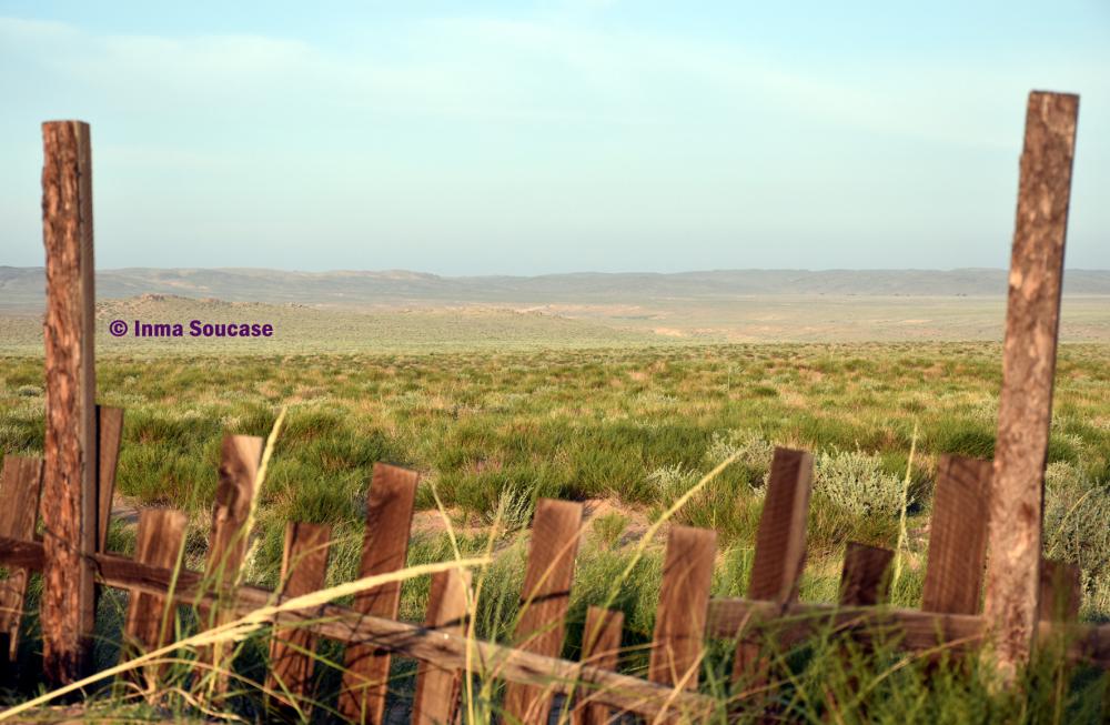 desierto-gobi-02-mongolia