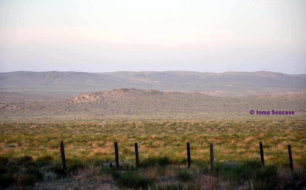 desierto-gobi-03-mongolia