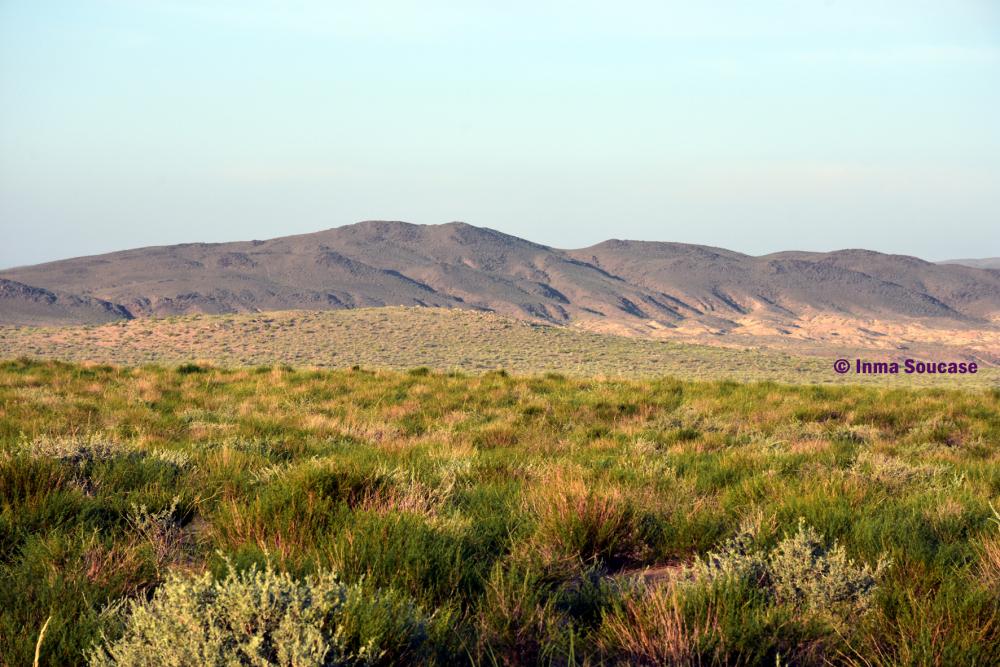 desierto-gobi-mongolia
