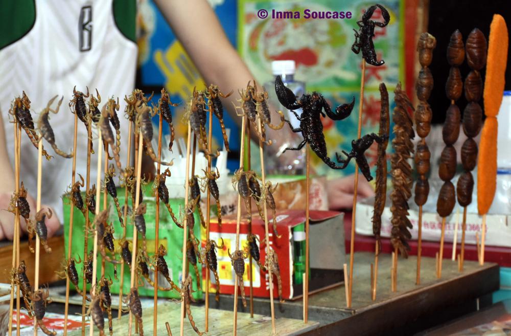 insectos-fritos-pekin
