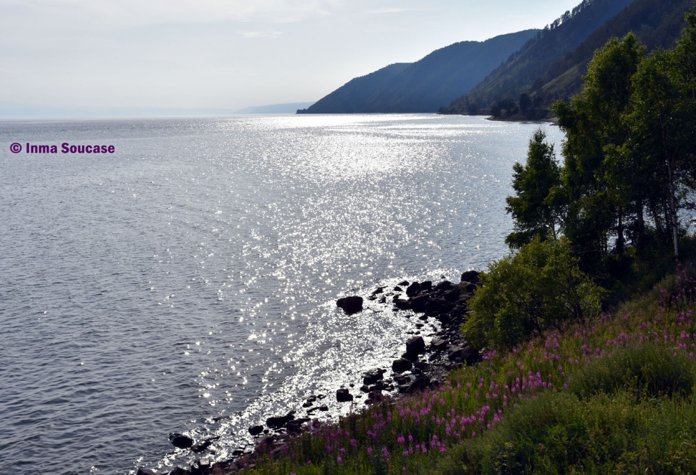 lago-baikal-flores