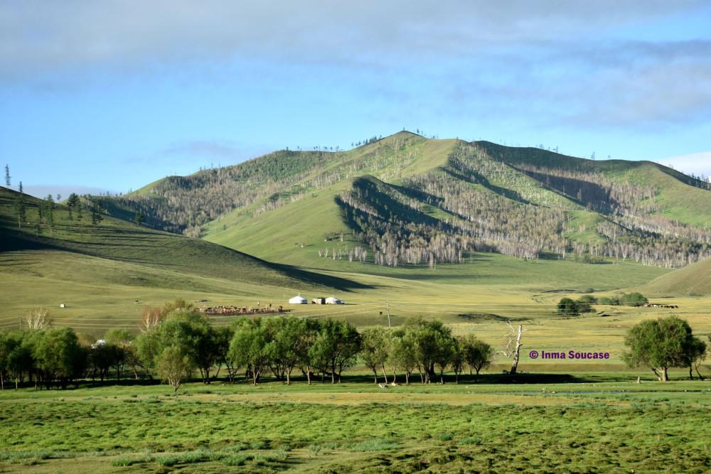 transiberiano-vistas-tren-paisaje-ulan-bator-mongolia-02