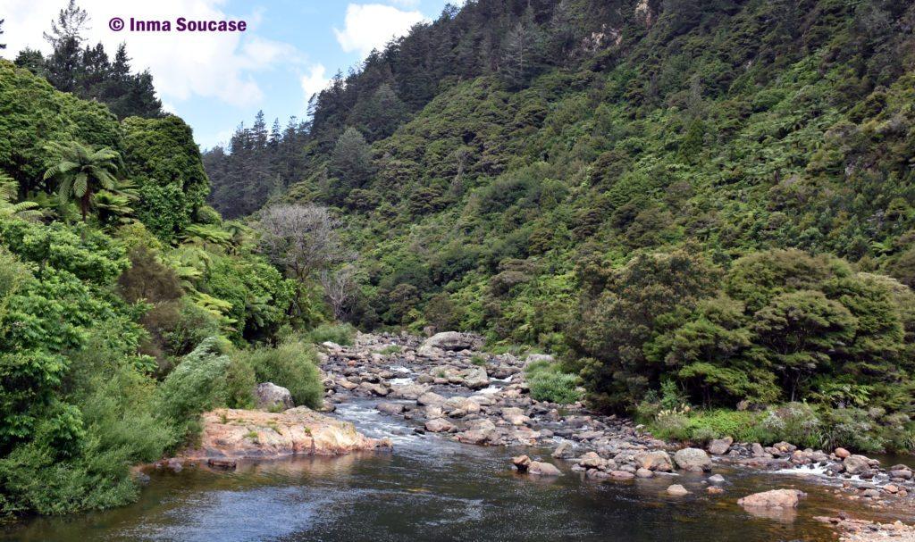 Karangahake rio