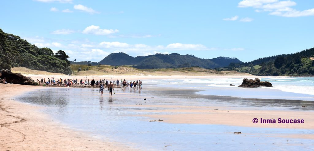 Whitianga playa Hot Water beach