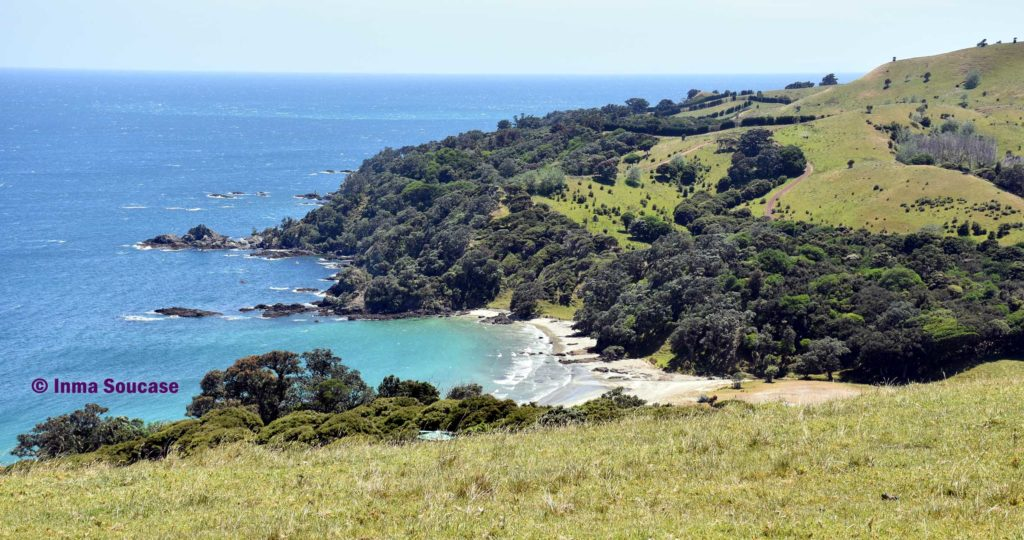 isla-Waiheke-costa